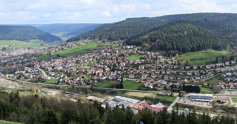 A Saturday Trek at Schwarzwald